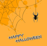 Halloween background with spider Stock Photos