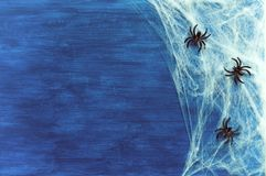 Halloween background with spider web and spiders as symbols of Halloween on the dark blue wooden background Stock Images