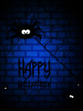 Halloween background with spiders and spiders web Stock Image