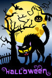 Halloween Background Spooky Cat Cemetery Royalty Free Stock Images