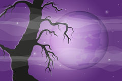 Halloween background with tree silhouette and full Stock Photography