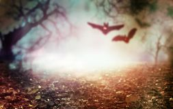 Halloween background of two flying vampires royalty free stock photography