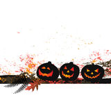 Halloween background - two pumpkins Royalty Free Stock Images