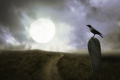 Free Halloween Background With Raven And Grave Stock Images - 121463114