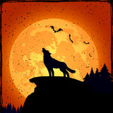Halloween background with wolf. Grunge Halloween night background with wolf and full Moon, illustration Stock Photography