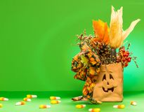 Halloween Bag isolated with green background royalty free stock image