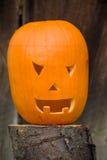 halloween bania Zdjęcia Royalty Free