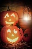 halloween banie Obraz Stock