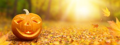 Halloween banner Stock Photography