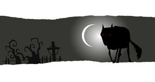 Halloween banner with lone wolf Royalty Free Stock Photo