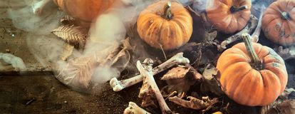 Halloween banner with pumpkins and dried bones. With scattered autumn leaves in a smoky misty atmosphere viewed close up high angle full frame Royalty Free Stock Images