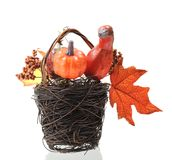 Halloween basket Royalty Free Stock Photography