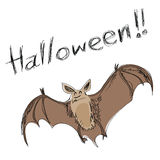Halloween bat Stock Images
