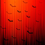 Halloween Bat Background Stock Photos