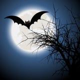 Halloween bat background Royalty Free Stock Image