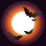 Halloween Bat Circle Frame Pumpkin Background Stock Photos