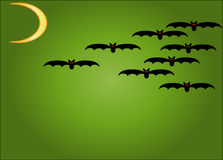 Halloween Bats Stock Photos