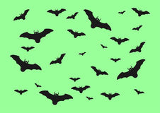 Halloween bats  on green background. Vector design for Halloween day Stock Photos