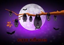Halloween bats Royalty Free Stock Image