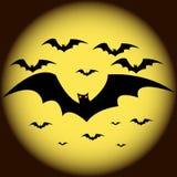 Halloween bats vector. Halloween bats icon vector illustration Royalty Free Stock Photo