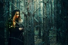 Halloween. beautiful girl in a black dress in the forest stock photo