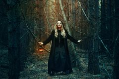 Halloween. beautiful girl with a lantern in a black dress in the forest. Stock Photography