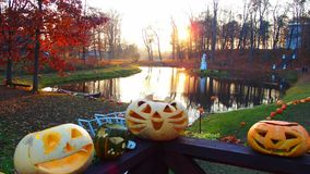 Halloween. In  beautiful Sveksna 2015 Royalty Free Stock Photo