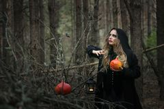 Halloween. beautiful witch girl in a black dress in the forest. stock photos
