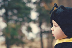 Halloween Bee Costume Royalty Free Stock Images