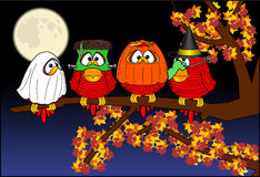 Halloween_birds Stock Photography