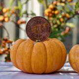 Halloween-bitcoin Konzept stockfotos