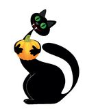 Halloween black cat Royalty Free Stock Images