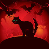 Halloween black cat. Halloween card with a black cat Royalty Free Stock Photos