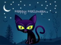 Halloween black cat background Royalty Free Stock Photography