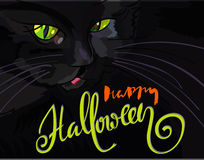 Halloween black cat with green eyes. Halloween handwritten lettering. Vector illustration. EPS10 Stock Image