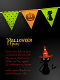 Halloween black cat party background Royalty Free Stock Image