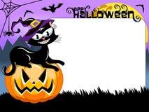 Halloween black cat pumpkin blank white frame Stock Photos