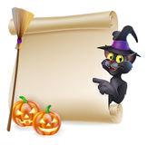 Halloween black cat Scroll. A Halloween black cat in witch's pointed hat pointing at the sign. Also with witch broom and carved pumpkins Royalty Free Stock Photos