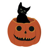 Halloween. A black cat sitting in a pumpkin Royalty Free Stock Images