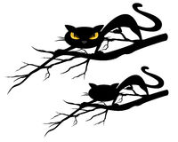 Halloween black cat on a tree branch design set. Halloween theme evil black cat on a tree branch - vector design set Stock Photo