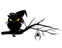 Halloween black cat on tree branch. Halloween theme evil black cat wearing witch hat and spider on a tree branch - monster vector design Royalty Free Stock Photo