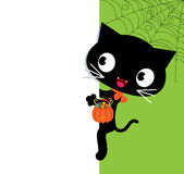 Halloween black cat and a white banner Stock Photo