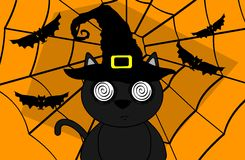 Halloween black cat witch background Stock Image