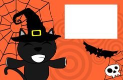Halloween black cat witch background2 Stock Images