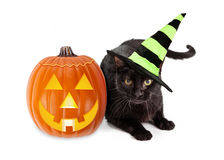 Halloween Black Cat Witch With Pumpkin. Black cat wearing a green and black striped witch hat laying next to an illuminated jack-o-lantern Halloween pumpkin royalty free stock photo
