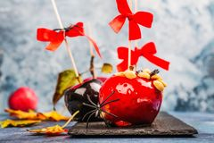 Caramelized candy apples. Halloween black and red poisoned caramelized apples with peanuts on wooden sticks with bows. Sweet candy apple dessert for halloween stock photography