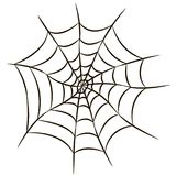 Halloween black spider web isolated on white background. Stock Image