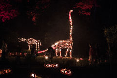 Halloween Blaze Royalty Free Stock Photo