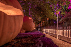 Halloween Blaze. Halloween Haunt Blaze in Sleepy Hallow Royalty Free Stock Photo