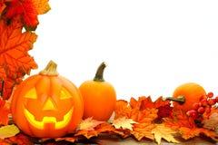 Halloween border. Halloween Jack o Lantern and leaf border with white background Royalty Free Stock Photo